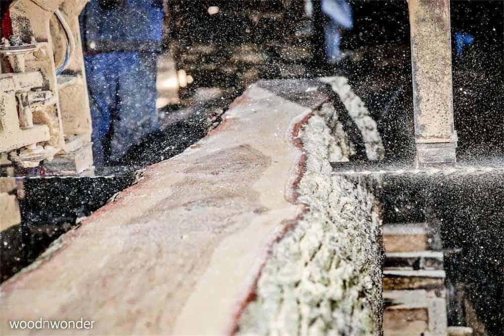 woodnwonder er skulpturelle, bæredygtige, unika møbler. Stamme skæres.