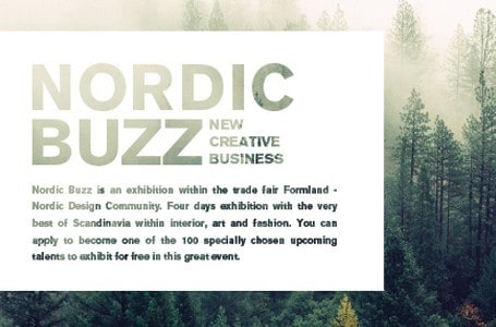 NORDIC BUZZ – new creative business